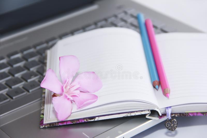 Notebook for business, pink and blue pencils and laptop computer keys. Notebook for business, pink and blue pencils and laptop computer a keys stock image