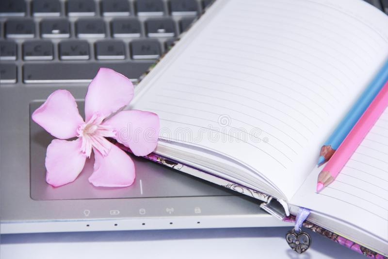 Notebook for business, pink and blue pencils and laptop computer keys. Notebook for business, pink and blue pencils and laptop computer a keys royalty free stock image