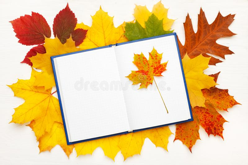 Notebook with clean sheets on the background of bright autumn leaves. Autumn mood concept. Flat lay, top view, copy space stock photography