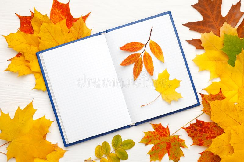 Notebook with clean sheets on the background of bright autumn leaves. Autumn mood concept. Flat lay, top view, copy space royalty free stock photography