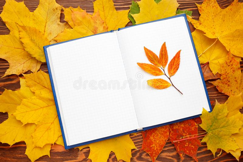 Notebook with clean sheets on the background of bright autumn leaves. Autumn mood concept. Flat lay, top view, copy space royalty free stock images