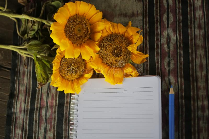Notebook crop, sunflower and pen on classic fabric background. Office flat lay concept. Copy space for text and design. Blank Notebook crop, sunflower and pen stock photography