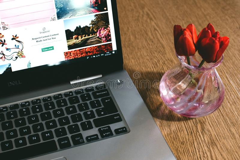 Notebook Dell nero accanto al vaso di vetro rosa fotografia stock