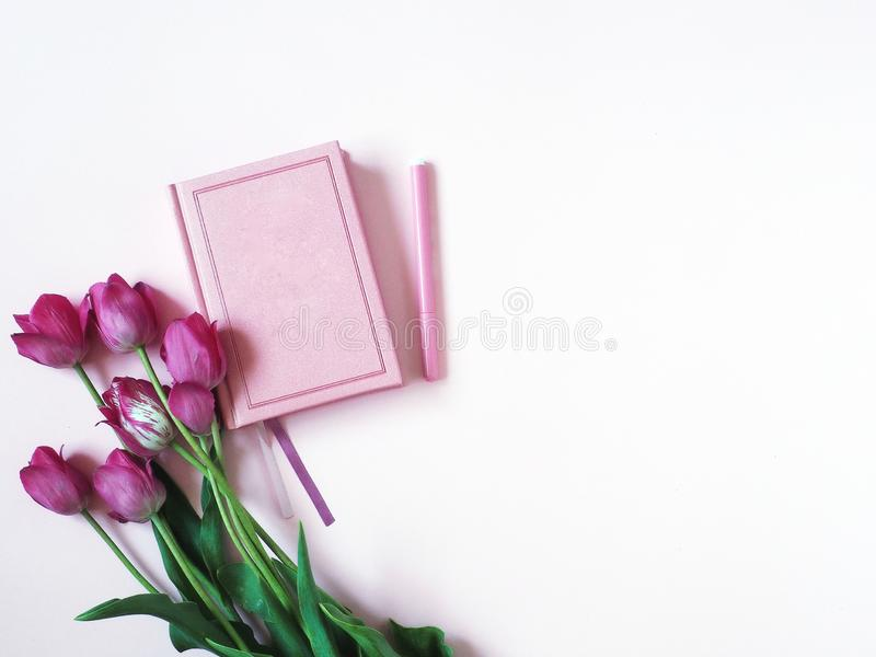 Notebook, diary with tulips on a pink background, top view. royalty free stock photography