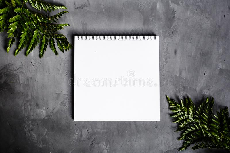 Notebook and green leaves lying on gray background. Flat lay, top view. Place for text royalty free stock image
