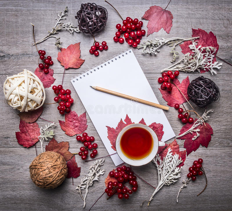 Notebook with a pencil, red autumn leaves, berries Viburnum, decorative balls made of rattan autumn decorations on wooden rust. Notebook with a pencil, red royalty free stock photography