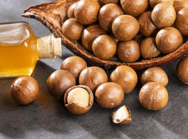 Noten en macadamia olie - Macadamia integrifolia Tekstruimte royalty-vrije stock afbeelding