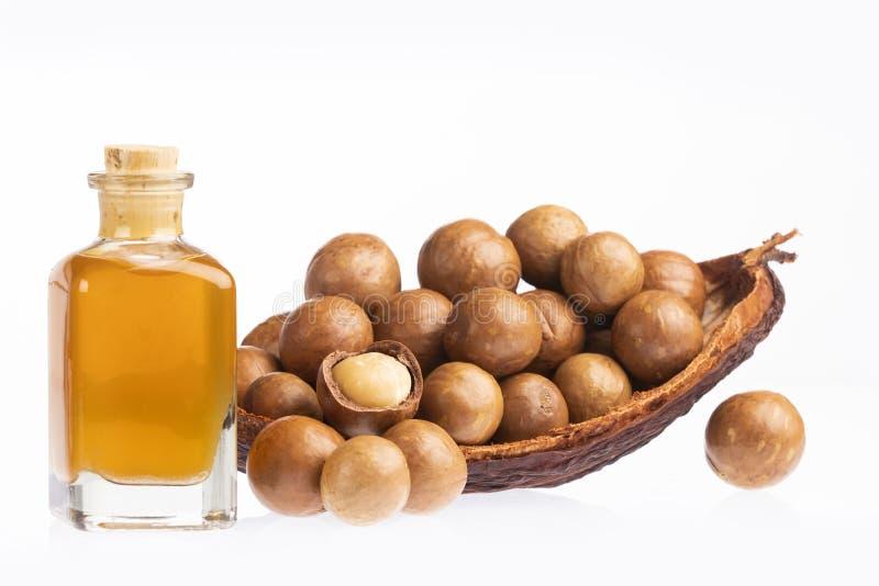 Noten en macadamia olie - Macadamia integrifolia Witte achtergrond stock afbeelding