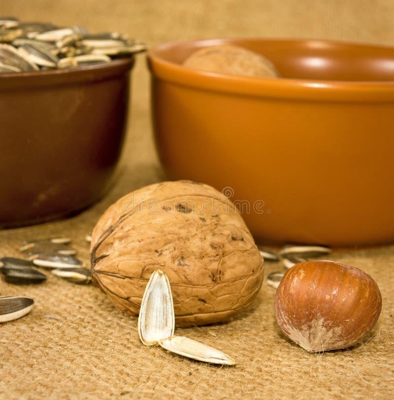 Noten en zaden in een kom stock foto