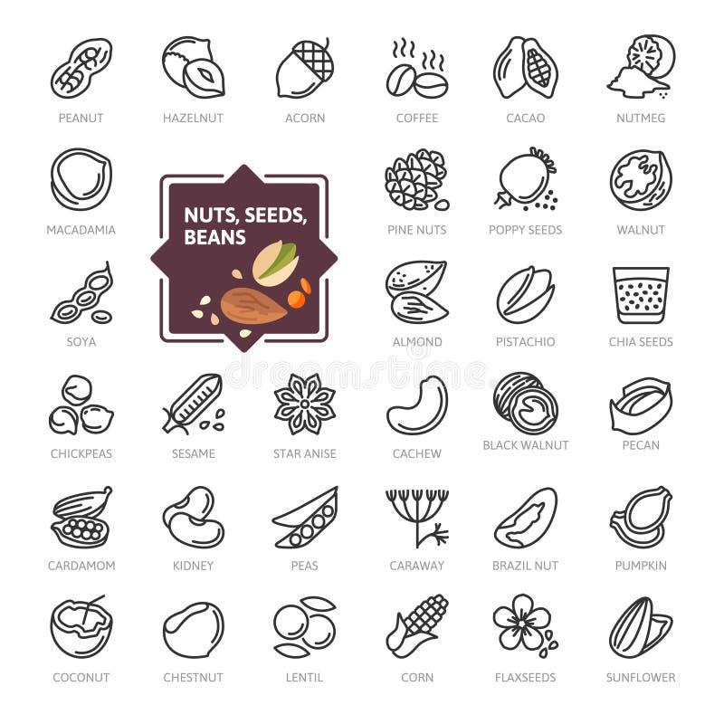 Noten, zaden en bonenelementen - minimale dunne het pictogramreeks van het lijnweb De inzameling van overzichtspictogrammen stock illustratie
