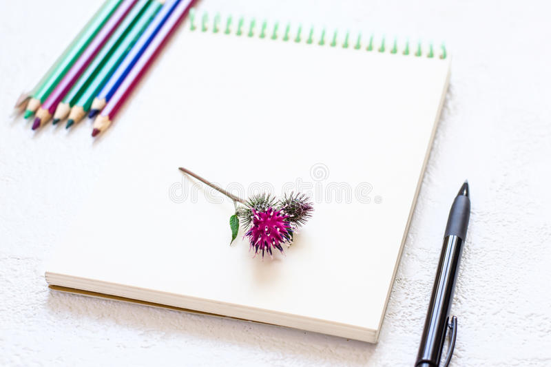Notepad for drawing and set of pencils in natural purple green tones stock photography