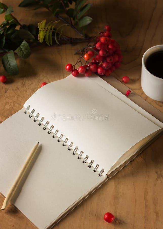 Notepad fritt utrymme för att skriva, penna royaltyfri foto