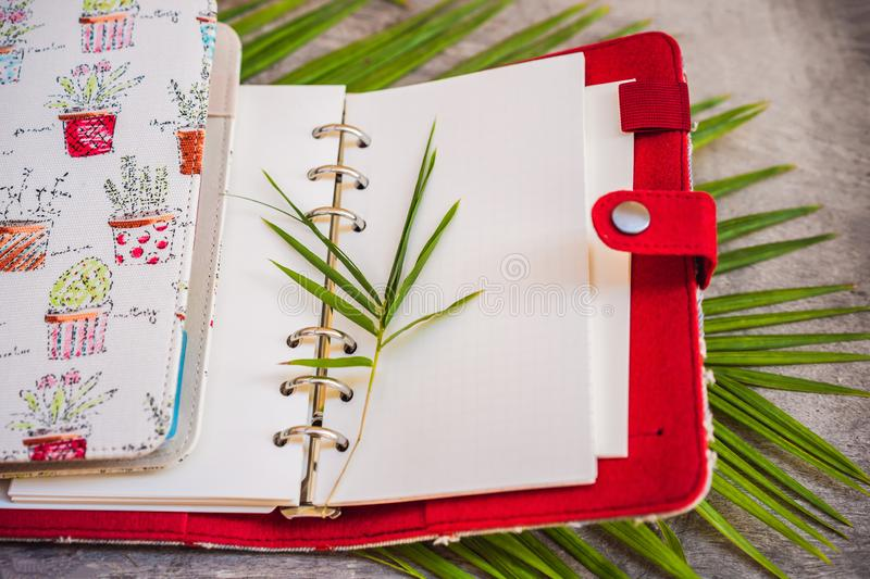 Notepad and stationery on wooden background. Planner for business and study. Fans of stationery.  stock image