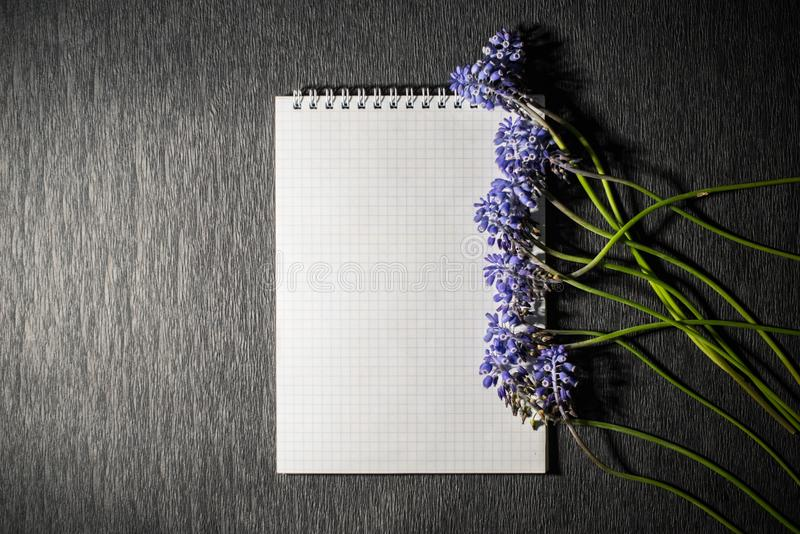 Notepad with wild flowers royalty free stock image