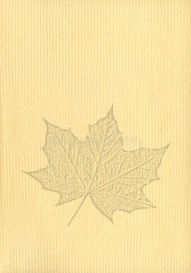 Notepaper document with a maple leaf watermark. Notepaper document background with a cut out maple leaf watermark stock image