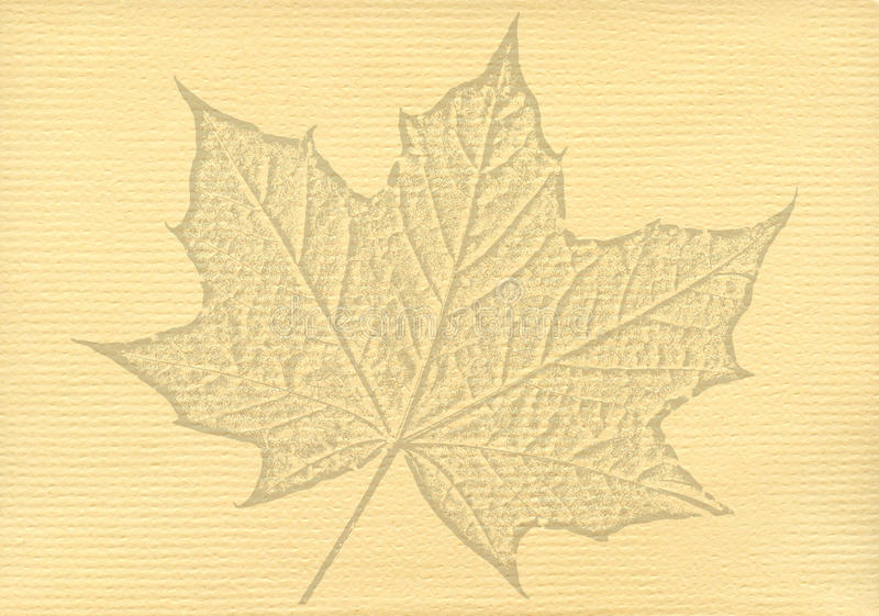 Notepaper document with a maple leaf watermark. Notepaper document background with a cut out maple leaf watermark stock photos