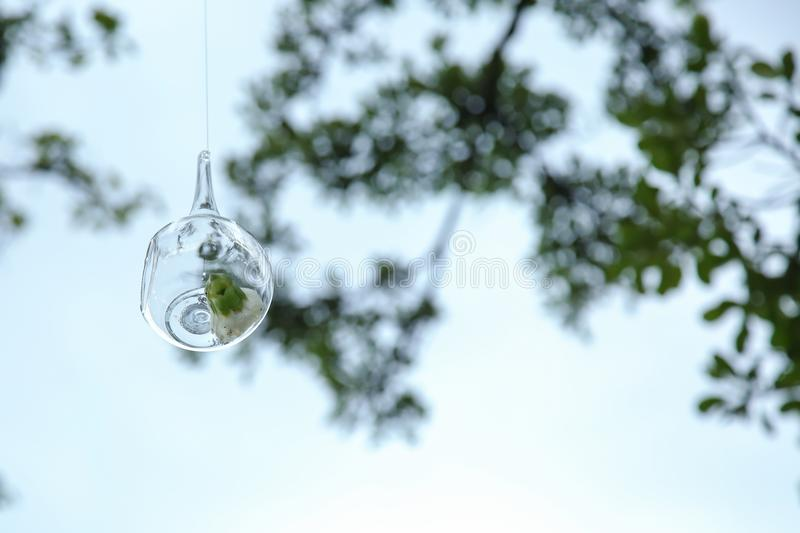Crystal Drop hanging in the air royalty free stock images