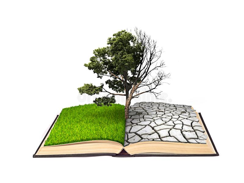 The notion of doubling. A dead tree on one side and a living tree on the other hand on a book with the same bipolarity. Isolated o. N white background royalty free illustration