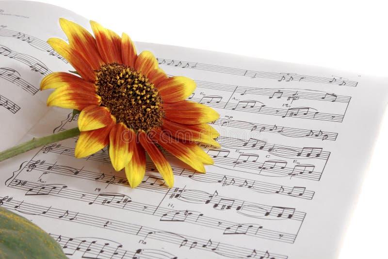 Notitieboekjes met nota's over de muziek & de bloem royalty-vrije stock foto's