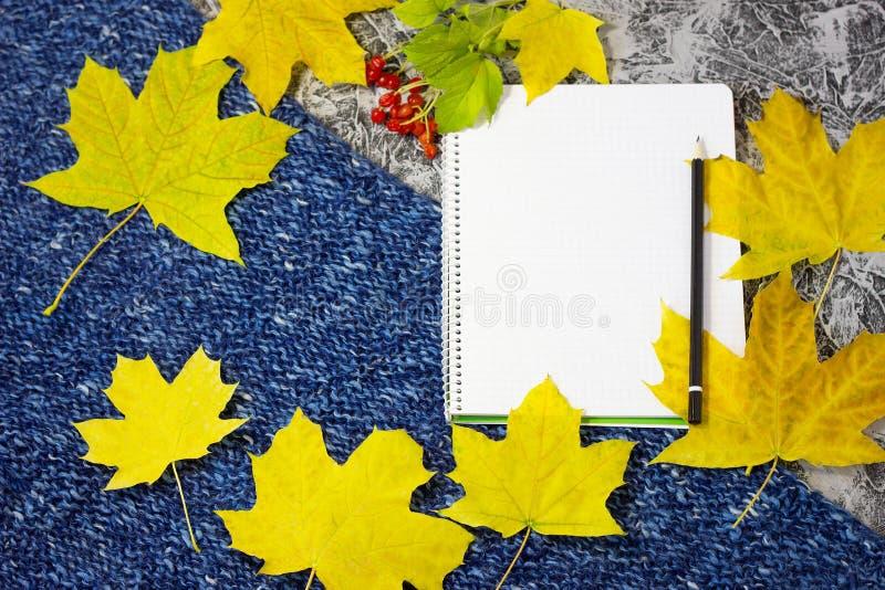 Notizbuch auf einem gestrickten Hintergrund lizenzfreie stockfotografie