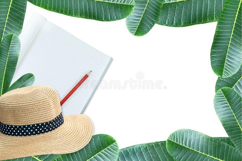 Notizbuch mit Bleistift und Strohhut mit Rahmengrün lässt Naturisolat auf Weiß lizenzfreie stockfotografie