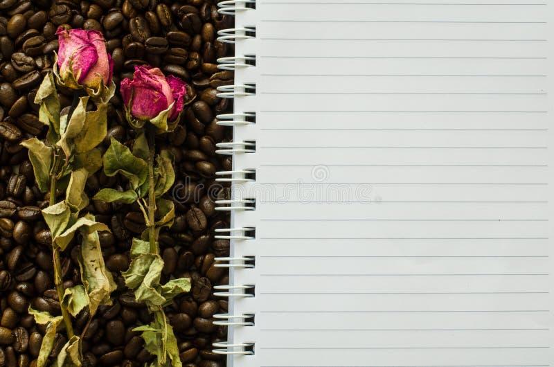 Notizbuch und runzliges stiegen lizenzfreies stockbild