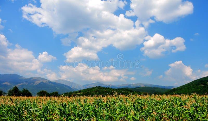 Notre belle nature en Bulgarie photos libres de droits