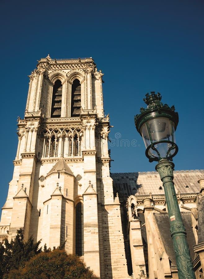 Notre Damae boczny widok z lampionem fotografia stock