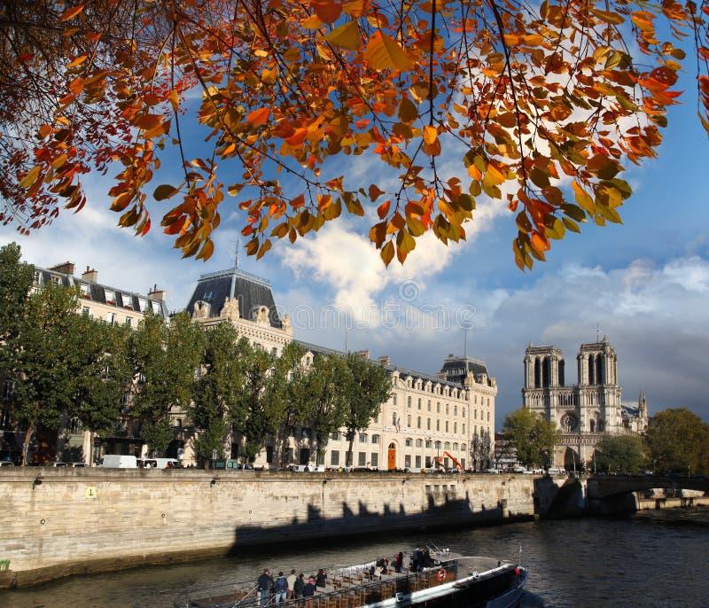 Notre Dame大教堂在巴黎,法国 免版税库存图片