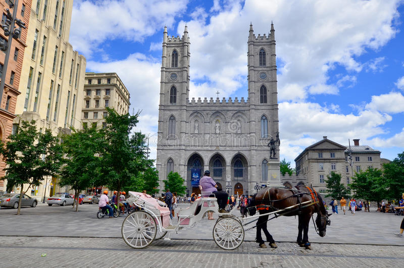 Notre Dame大教堂 免版税图库摄影