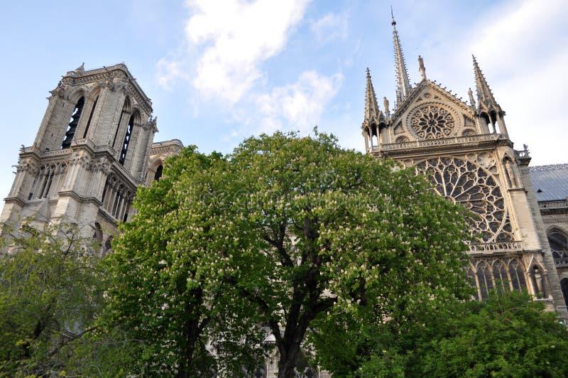 Notre Dame à Paris, France image stock