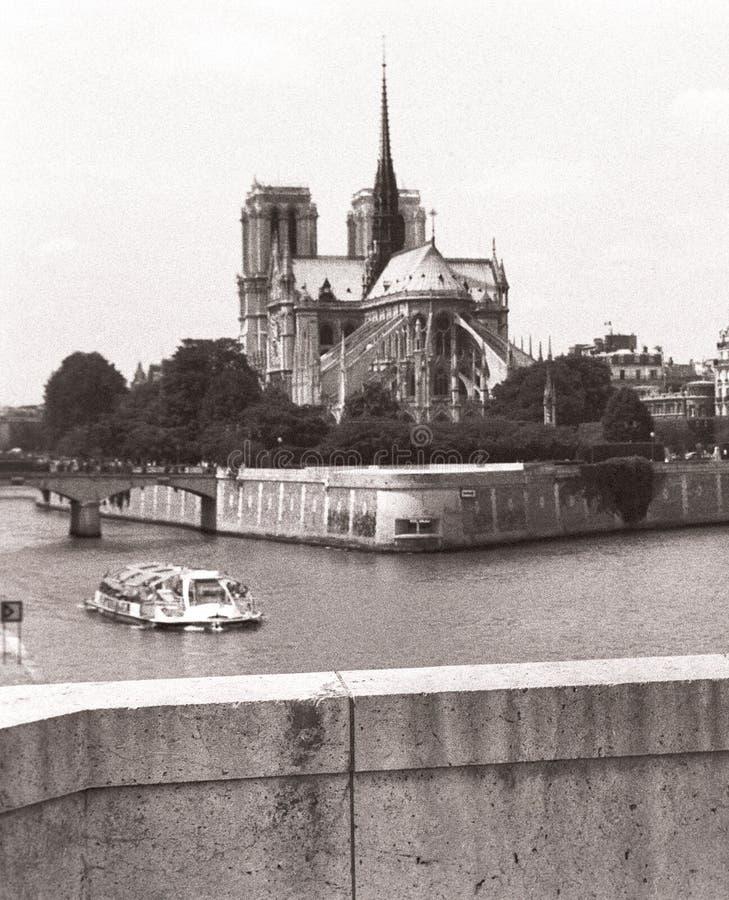 Notre Dame immagini stock