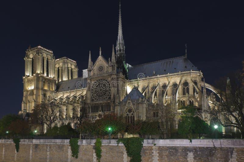 Notre Dame av Paris på natten arkivbild