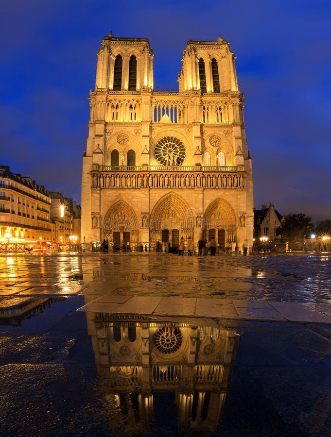 Notre-Dame blåttreflexion royaltyfri fotografi