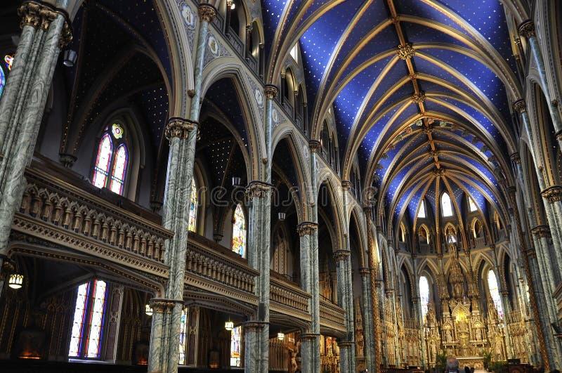 Notre - Dame Cathedral Basilica byggnadsinre från i stadens centrum Ottawa i Kanada fotografering för bildbyråer
