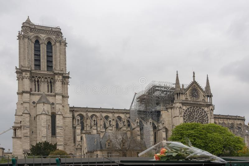 Notre Dame Cathedral After Fire with Flowers royalty free stock images