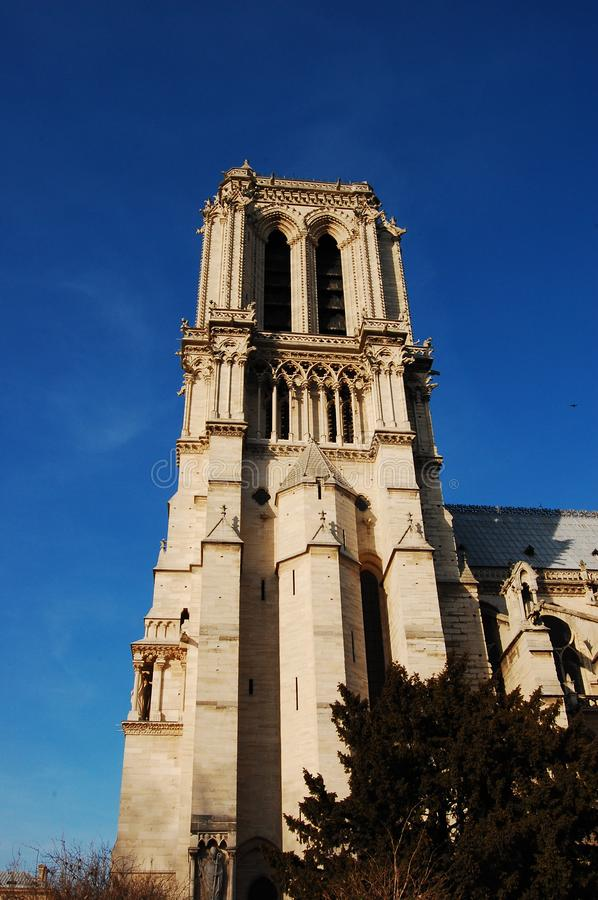 Notre-Dame cathedral - fragment