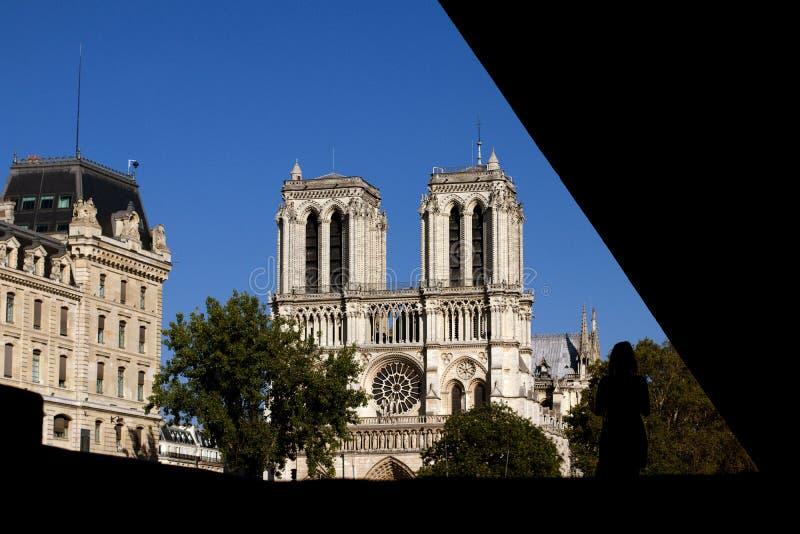 Notre Dame Cathedral i sommardomkyrka av vår dam av Paris, Frankrike royaltyfria bilder