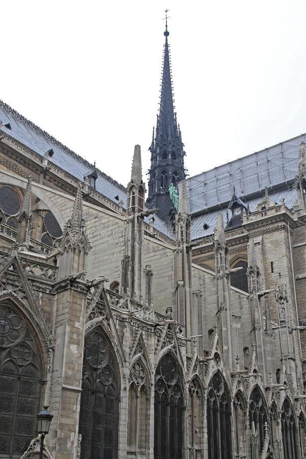 Notre Dame Construction royaltyfria foton