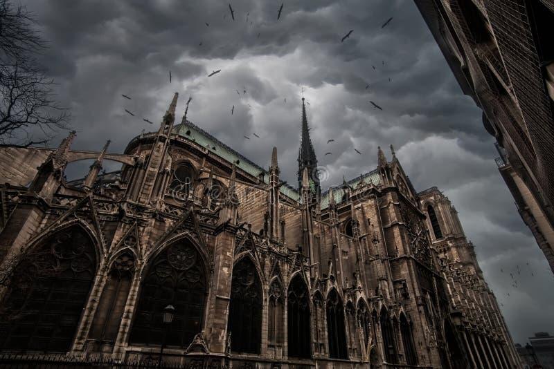 Notre Dame De Paris obrazy stock