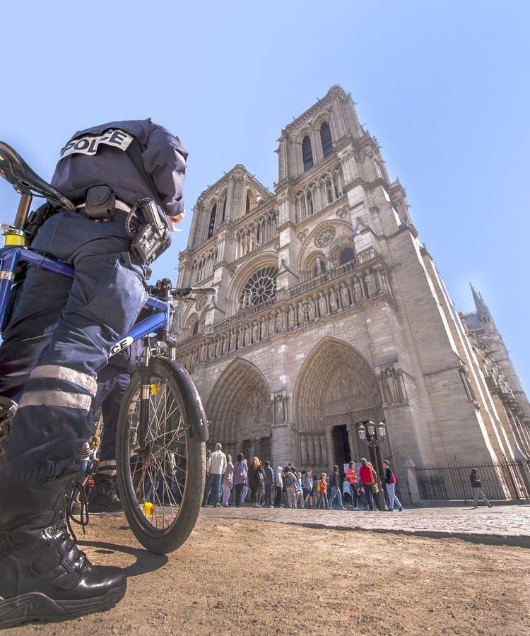 Notre Dame de Paris royalty-vrije stock foto