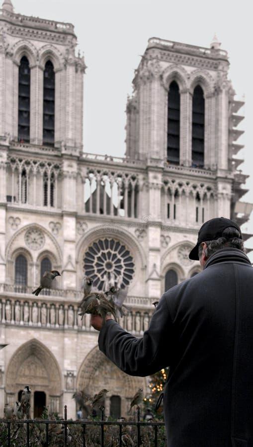 Download Notre Dame de Paris foto de stock. Imagem de france, velho - 69080