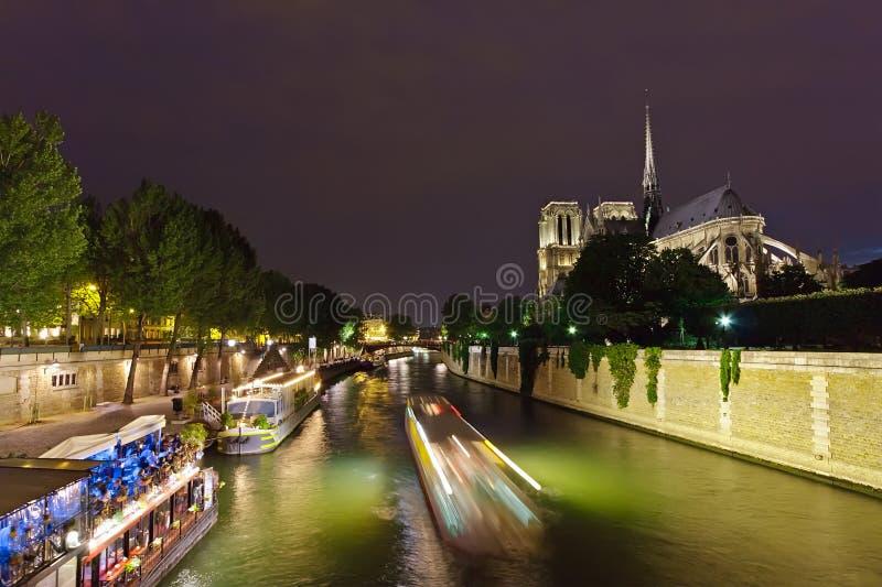 Notre Dame de Paris alla notte immagine stock libera da diritti