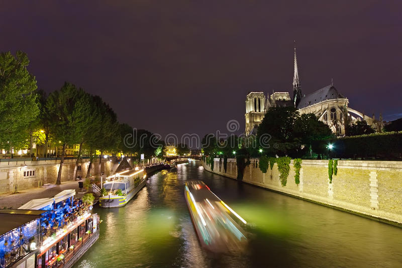 Notre Dame de Paris bij nacht royalty-vrije stock afbeelding