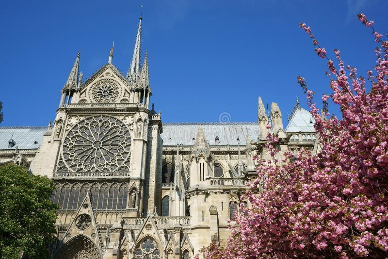 Notre-Dame de Paris Cathedral detail South rose window royalty free stock photo