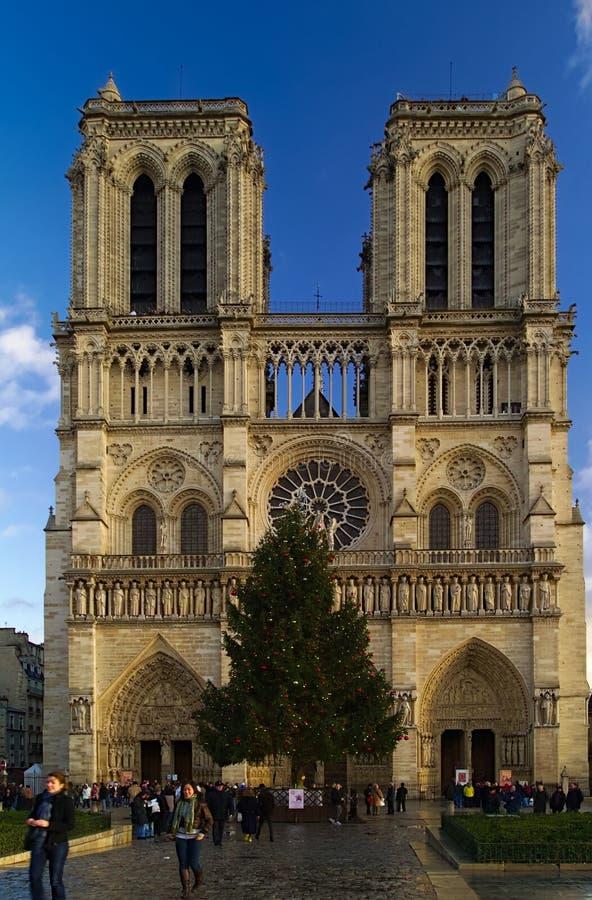 Notre Dame de Paris Cathedral, Frankrijk Afgelopen Kerstmisfoto stock foto's