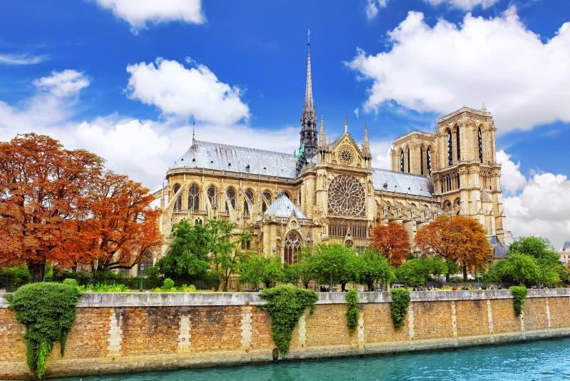 Notre Dame de Paris Cathedral. Paris. Frankrike. arkivbilder