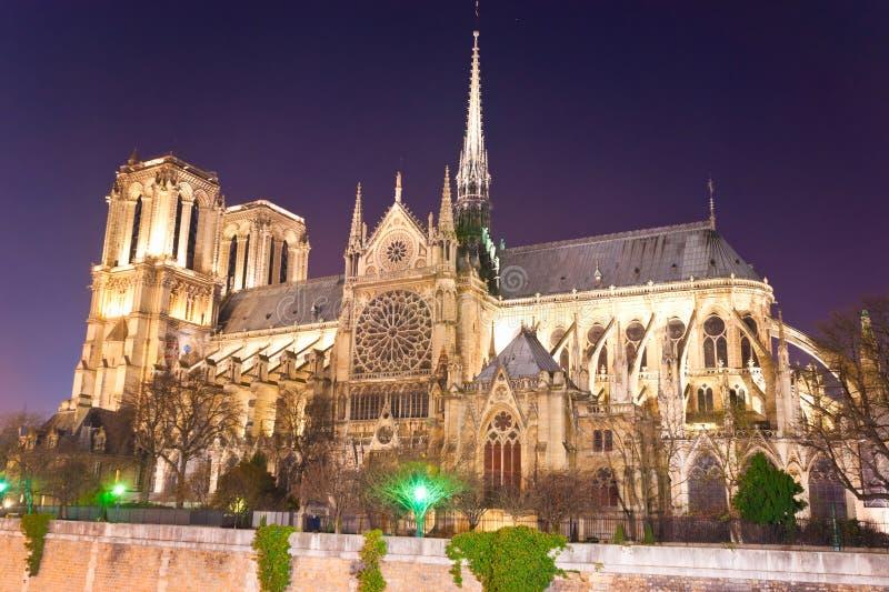 Notre Dame de Paris, Frankrike. arkivbild
