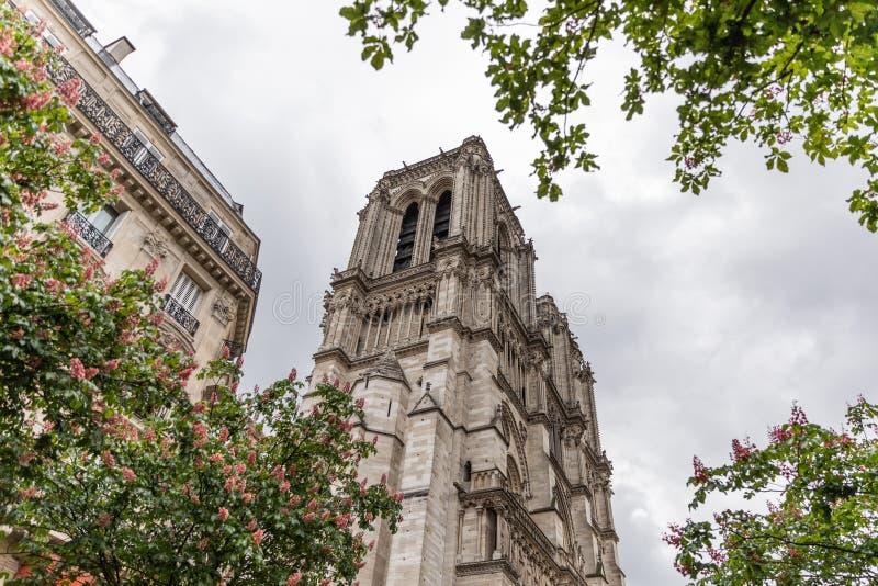 Notre Dame de Paris, Frankrike efter branden royaltyfria bilder