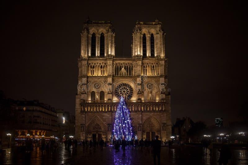 Notre Dame De Paris katedra przy nocą z tradycyjną choinką w przodzie fotografia royalty free